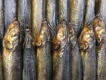 Primo piano del mucchio impilato pesce affumicato Immagine Stock