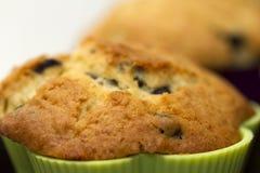 Primo piano del muffin Immagini Stock Libere da Diritti