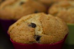 Primo piano del muffin Fotografia Stock Libera da Diritti