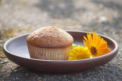 Primo piano del muffin e del fiore del tagete al sole Fotografie Stock