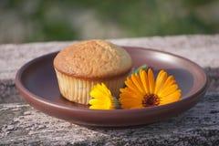 Primo piano del muffin e del fiore del tagete sul piatto di argilla Immagine Stock Libera da Diritti