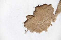 Primo piano del muro di cemento incrinato Fotografia Stock Libera da Diritti