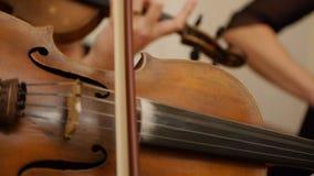 Primo piano del musicista che gioca violino archivi video