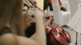 Primo piano del musicista che gioca violino, classico video d archivio
