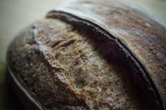 Primo piano del pane crostoso del grano intero Immagine Stock Libera da Diritti
