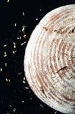 Primo piano del pane crostoso dell'artigiano su fondo nero Immagine Stock
