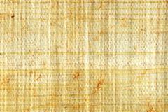 Primo piano del papiro Immagine Stock Libera da Diritti