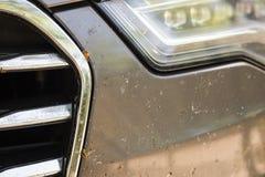Primo piano del paraurti anteriore dell'automobile con molti insetti fracassati Azionamento ad alta velocità Immagini Stock Libere da Diritti