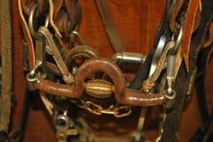 Primo piano del pezzo del cavallo Fotografia Stock Libera da Diritti
