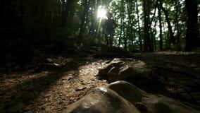 Primo piano del piede nello stivale Una viandante dell'uomo funziona lungo il percorso nella viandante della foresta dell'estate  archivi video