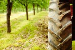 Primo piano del pneumatico del trattore Immagini Stock Libere da Diritti