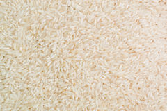 Primo piano del riso bianco Immagini Stock