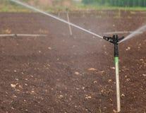Primo piano del sistema di irrigazione a pioggia Immagini Stock Libere da Diritti