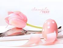 Primo piano del tulipano e degli utensili Fotografie Stock