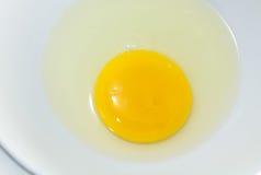 Primo piano del tuorlo d'uovo Fotografie Stock Libere da Diritti