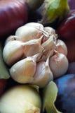 Primo piano dell'aglio Mazzo di aglio Mazzo di verdure Immagine Stock Libera da Diritti