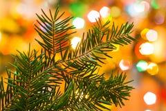 Primo piano dell'albero di Natale circondato da fondo leggero del Ch immagine stock libera da diritti