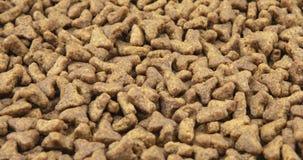 Primo piano dell'alimento asciutto dell'animale domestico Mucchio delle palline del cane o del gatto archivi video