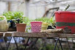 Primo piano dell'attrezzatura di giardinaggio Fotografia Stock