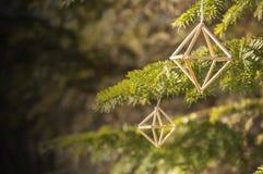 Primo piano dell'elemento del himmeli dalle canne alla luce solare di mattina Fotografie Stock