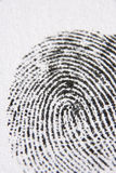 Primo piano dell'impronta digitale Fotografia Stock Libera da Diritti