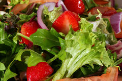 Primo piano dell'insalata Immagine Stock Libera da Diritti