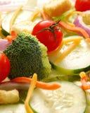 Primo piano dell'insalata del giardino Immagine Stock