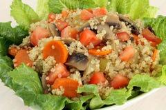 Primo piano dell'insalata della quinoa Fotografia Stock