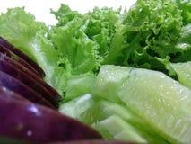 Primo piano dell'insalata della verdura fresca Fotografia Stock