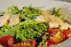 Primo piano dell'insalata di Cesar immagini stock