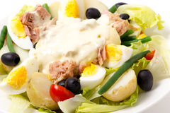 Primo piano dell'insalata di Nicoise Immagine Stock