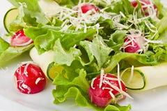 Primo piano dell'insalata sana di verdure della primavera fresca Fotografia Stock