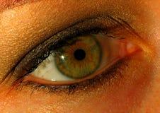 Primo piano dell'occhio Fotografie Stock