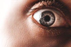 Primo piano dell'occhio azzurro di un uomo spaventato Fotografia Stock Libera da Diritti
