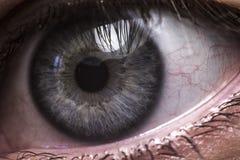 Primo piano dell'occhio umano blu fotografia stock