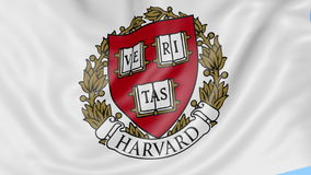 Primo piano della bandiera d'ondeggiamento con l'emblema di Harvard, ciclo senza cuciture, fondo blu Animazione editoriale 4K illustrazione di stock