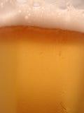 Primo piano della birra Immagini Stock