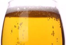 Primo piano della birra leggera Fotografia Stock Libera da Diritti
