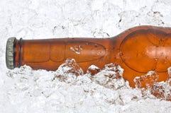 Primo piano della bottiglia di birra in ghiaccio schiacciato fotografie stock libere da diritti
