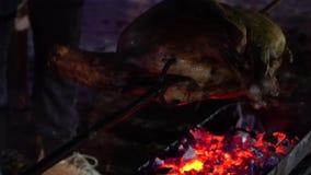 Primo piano della carcassa di maiale di giro sullo spiedo mentre grigliandolo all'aperto alla notte stock footage