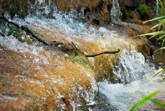 Primo piano della cascata Immagini Stock Libere da Diritti