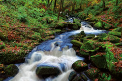 Primo piano della cascata di autunno Immagine Stock