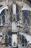 Primo piano della cattedrale del Notre Dame Fotografie Stock