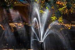 Primo piano della fontana in un giardino in autunno Fotografia Stock