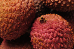 Primo piano della frutta cinese di lychee Fotografia Stock Libera da Diritti