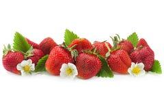 Primo piano della frutta della fragola su bianco Immagine Stock Libera da Diritti