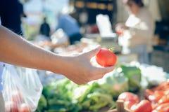 Primo piano della mano che tiene pomodoro maturo rosso sul fondo del mercato dell'azienda agricola Fotografie Stock Libere da Diritti
