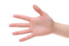 Primo piano della palma della mano della donna Immagini Stock