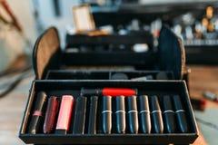 Primo piano della raccolta del rossetto, cosmetico professionale Immagine Stock