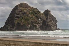Primo piano della roccia del coniglio in spuma del mare di Tasman Fotografie Stock Libere da Diritti